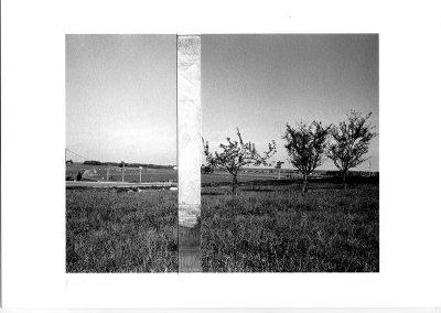 """Après Rembrandt, 20x30cm, 2007 , 14 photographies argentiques + gravure (""""Les trois arbres"""", 1643)"""
