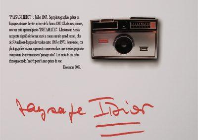 Paysage idiot, photo éditée à 7 exemplaires, 80x45cm, Digigraphie Epson, RLD, 2009