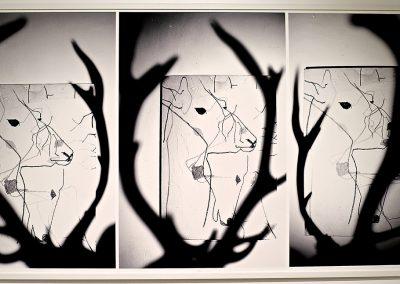 Poésie, Photo éditée à 7 exemplaires, 91x175cm, Digigraphie Epson, RLD, 2011