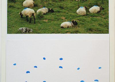 Identité nationale, 7 photos indissociables tirées à 7 exemplaires,  70x50cm chacune, Digigraphie Epson, RLD + aquarelle. 2010