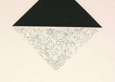 Carbone Dessin, (70 originaux), 65x50cm, 1982-85