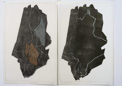 Long fleuve noir, (35), 48x31 cm, 2008