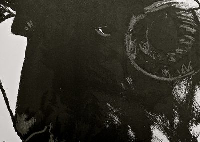 LA15 : Laurent Devèze, La recette du gigot farci,  Digigraphies et gravures de Joël Desbouiges, Collection En Puisaye, éditions RLD, Parly. 2011